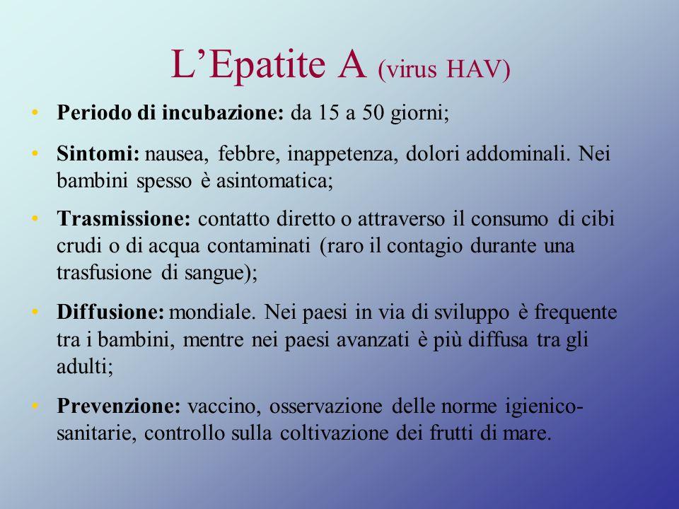 LEpatite A (virus HAV) Periodo di incubazione: da 15 a 50 giorni; Sintomi: nausea, febbre, inappetenza, dolori addominali. Nei bambini spesso è asinto