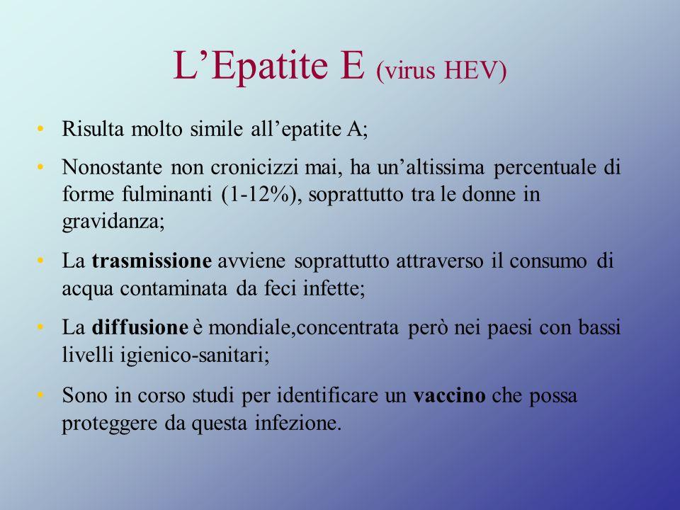 LEpatite E (virus HEV) Risulta molto simile allepatite A; Nonostante non cronicizzi mai, ha unaltissima percentuale di forme fulminanti (1-12%), sopra