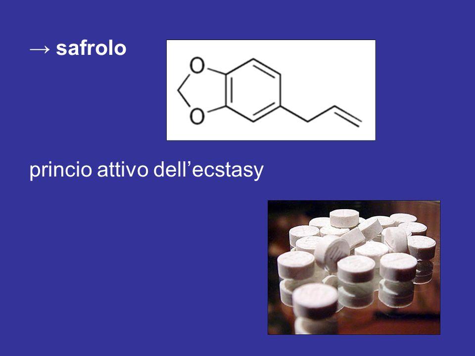 safrolo princio attivo dellecstasy