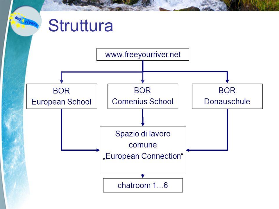 Struttura www.freeyourriver.net BOR European School BOR Comenius School Spazio di lavoro comune European Connection BOR Donauschule chatroom 1...6