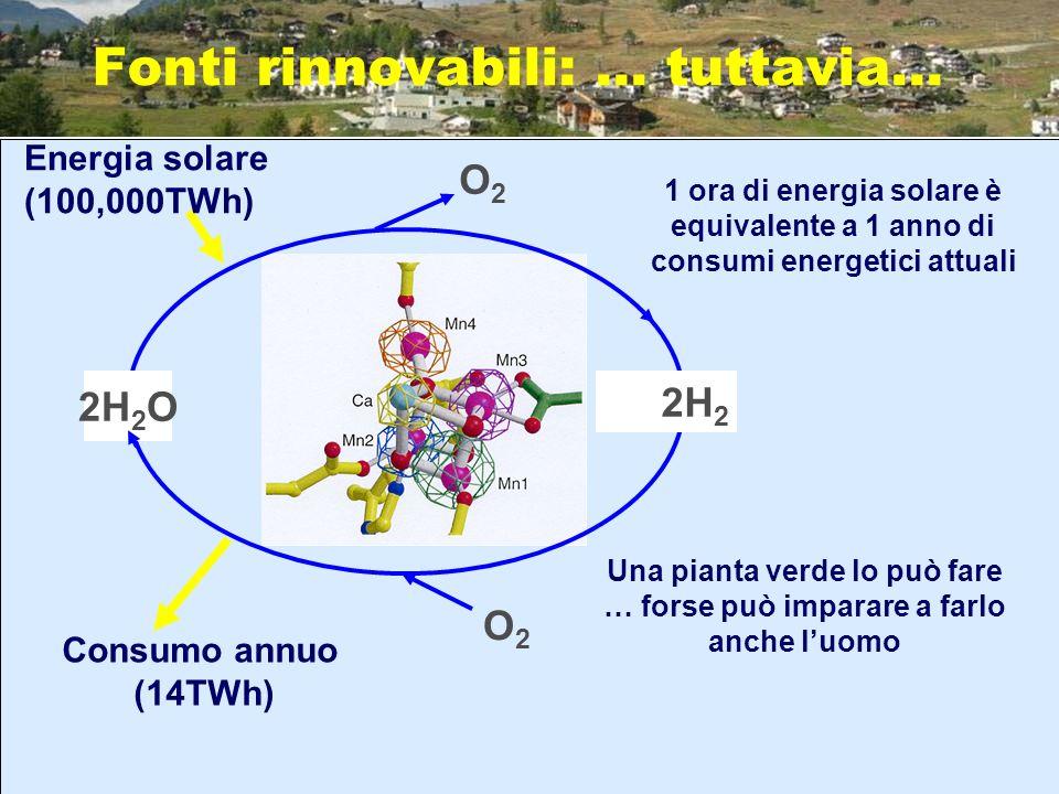 Fonti rinnovabili: … tuttavia… 2H 2 O 2H 2 O2O2 O2O2 Energia solare (100,000TWh) Consumo annuo (14TWh) Una pianta verde lo può fare … forse può impara