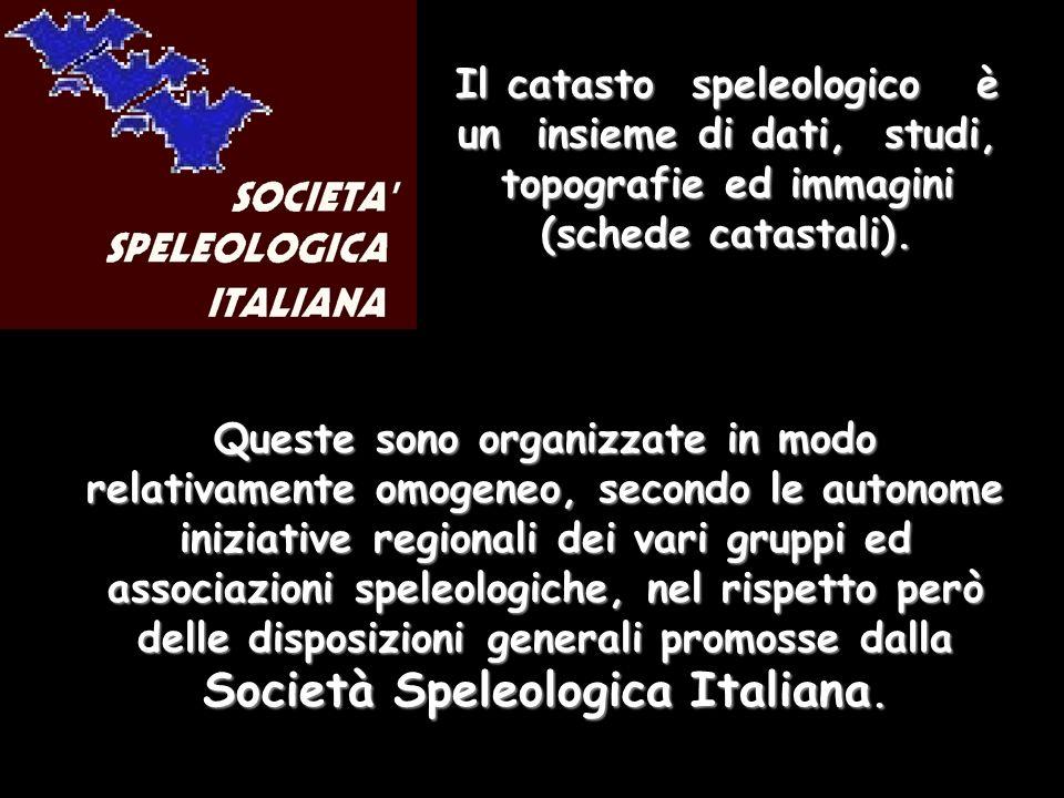 Queste sono organizzate in modo relativamente omogeneo, secondo le autonome iniziative regionali dei vari gruppi ed associazioni speleologiche, nel rispetto però delle disposizioni generali promosse dalla Società Speleologica Italiana.