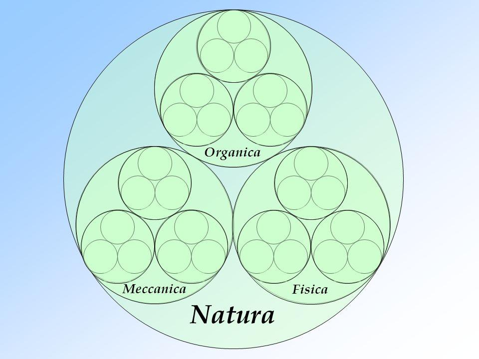 Natura Meccanica Organica Fisica