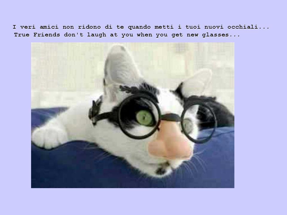I veri amici non ridono di te quando metti i tuoi nuovi occhiali... True Friends don't laugh at you when you get new glasses... True Friends don't lau