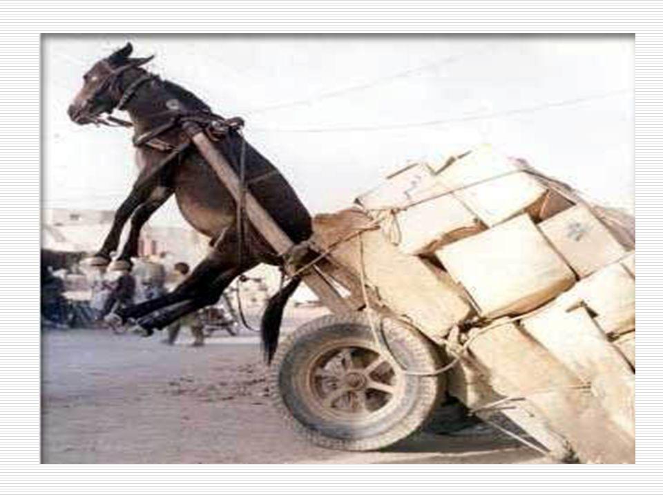 Caratteristiche del carico il carico è troppo pesante (> Kg.