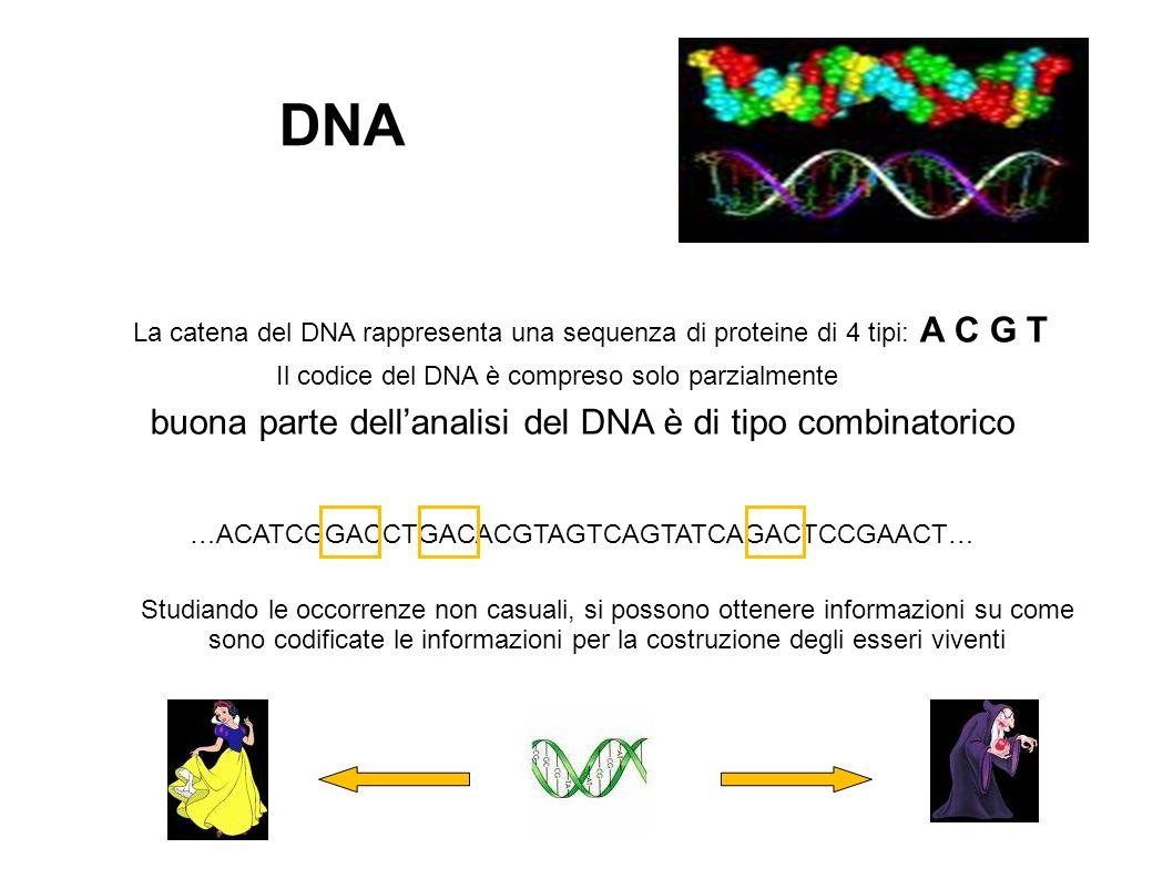 La catena del DNA rappresenta una sequenza di proteine di 4 tipi: A C G T DNA Il codice del DNA è compreso solo parzialmente buona parte dellanalisi del DNA è di tipo combinatorico …ACATCGGACCTGACACGTAGTCAGTATCAGACTCCGAACT… Studiando le occorrenze non casuali, si possono ottenere informazioni su come sono codificate le informazioni per la costruzione degli esseri viventi
