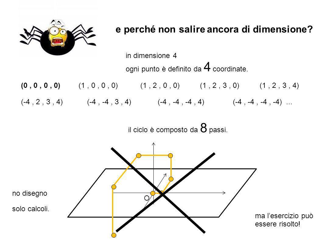 O in dimensione 4 ogni punto è definito da 4 coordinate.