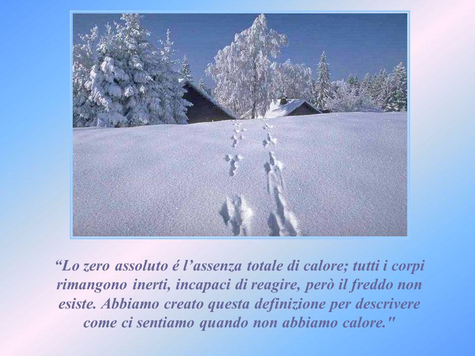 Lo zero assoluto é lassenza totale di calore; tutti i corpi rimangono inerti, incapaci di reagire, però il freddo non esiste.