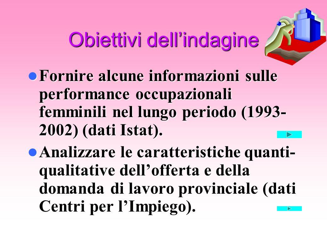 Obiettivi dellindagine Fornire alcune informazioni sulle performance occupazionali femminili nel lungo periodo (1993- 2002) (dati Istat). Fornire alcu