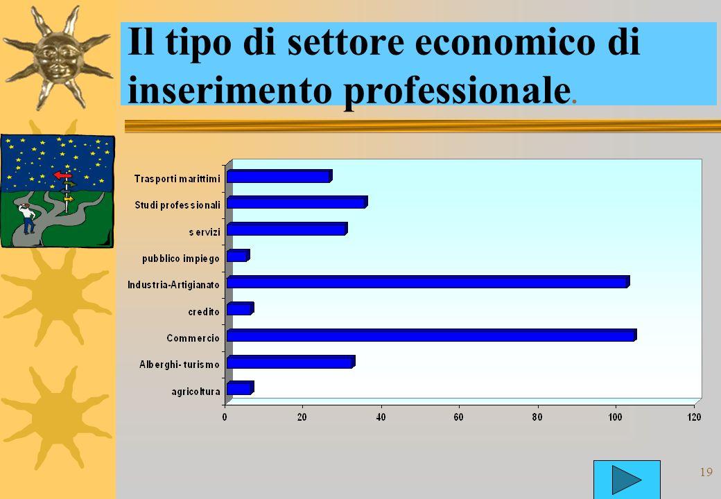 19 Il tipo di settore economico di inserimento professionale.