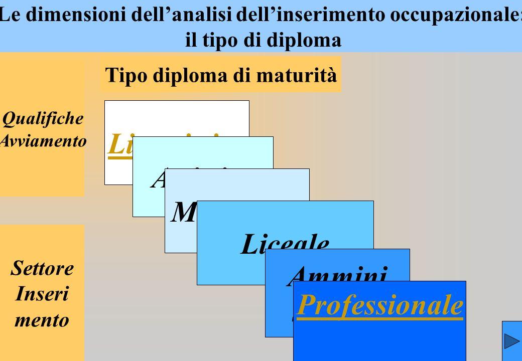 Le dimensioni dellanalisi dellinserimento occupazionale: il tipo di diploma Tipo diploma di maturità Qualifiche Avviamento Settore Inseri mento Linguistica Artistica Magistrale Liceale Ammini strativa Professionale