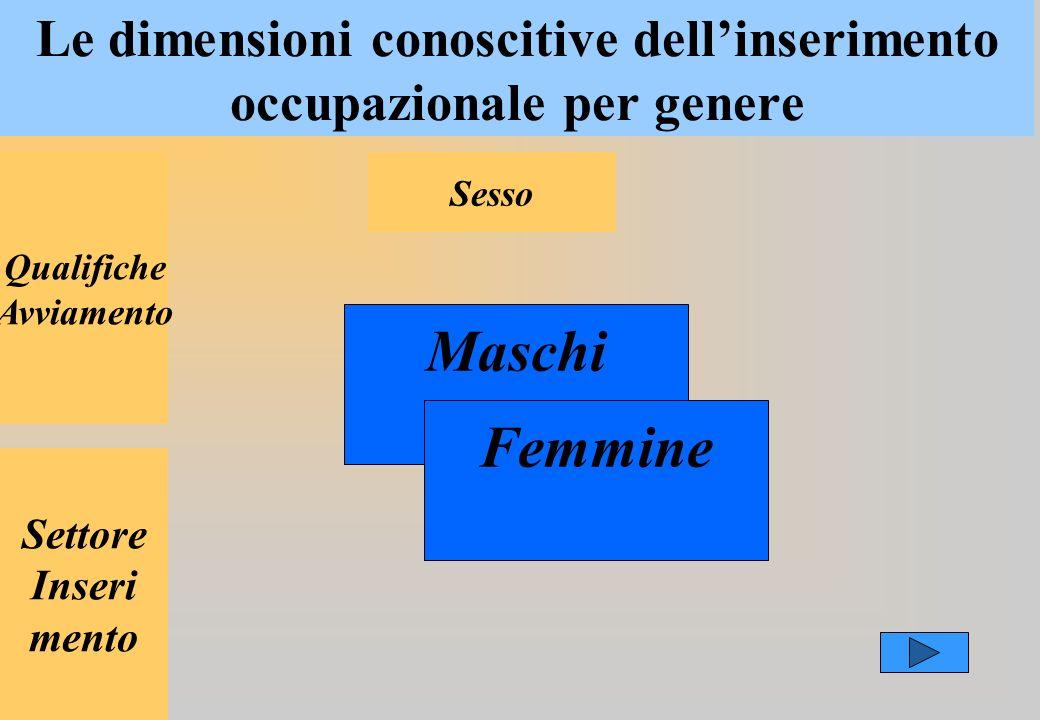Le dimensioni conoscitive dellinserimento occupazionale per genere Qualifiche Avviamento Settore Inseri mento Sesso Maschi Femmine