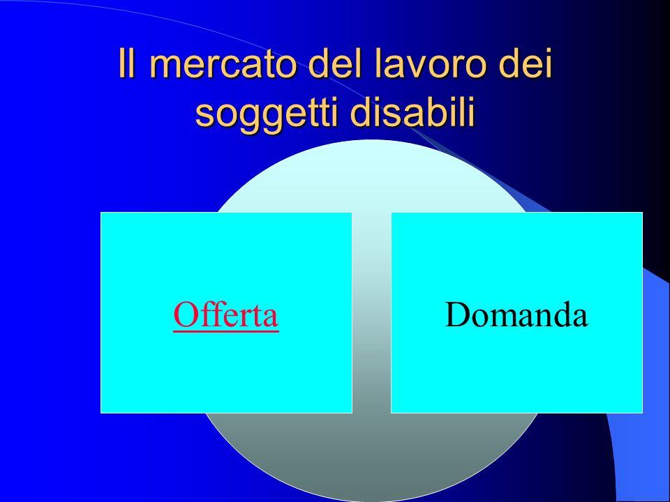 Lofferta di lavoro di soggetti disabili I disponibili a lavorare Caratteristiche Performance Gli iscritti