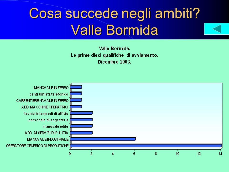 Cosa succede negli ambiti? Valle Bormida