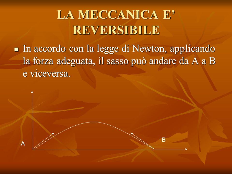 LA MECCANICA E REVERSIBILE In accordo con la legge di Newton, applicando la forza adeguata, il sasso può andare da A a B e viceversa. In accordo con l