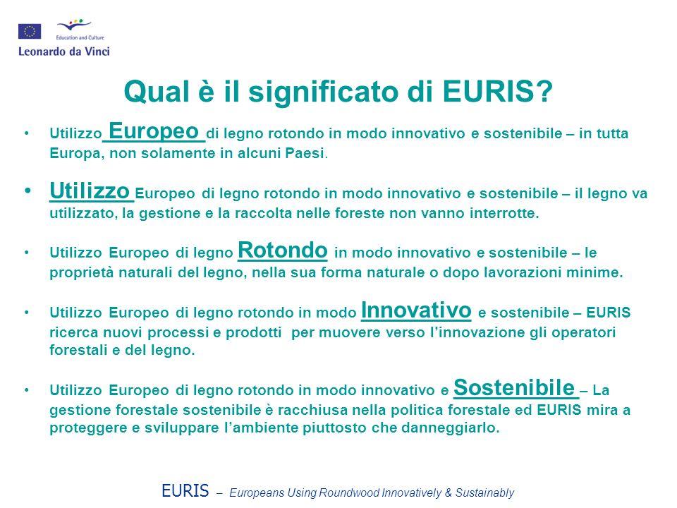 Qual è il significato di EURIS.