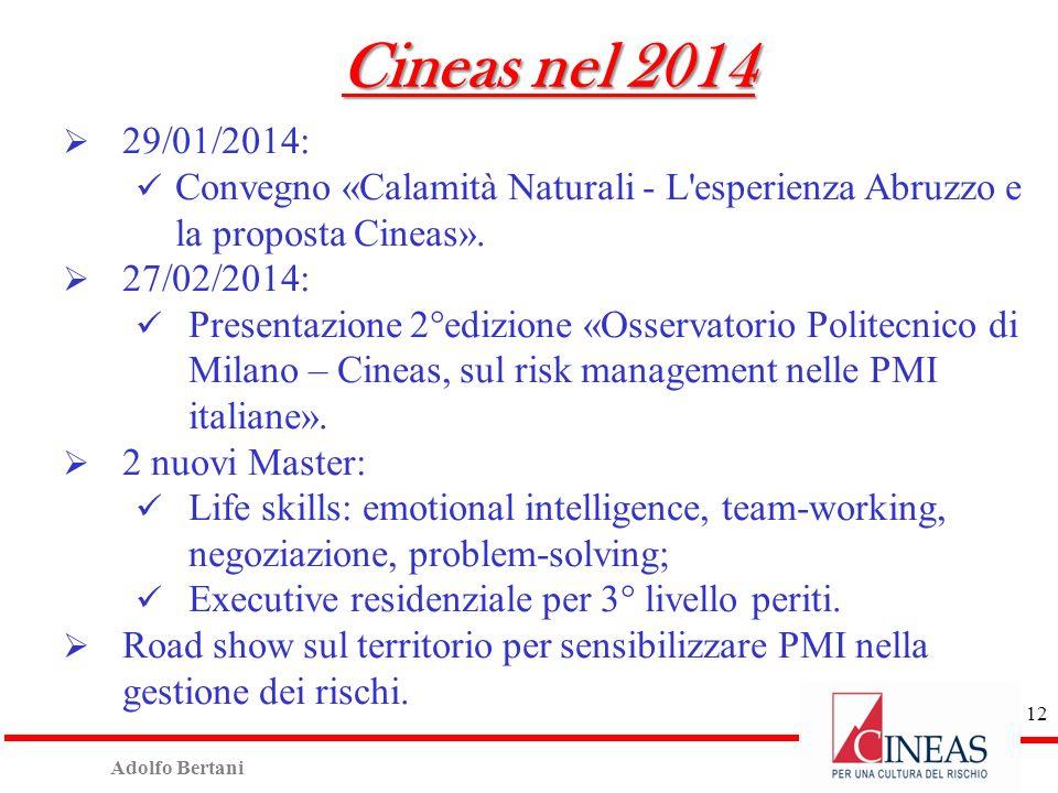 Adolfo Bertani 11 Cineas nel 2013 (cont.) Tavolo Cineas Sanità: n°34 partecipanti e 2 documenti condivisi tra Assicurazioni e Sanità: proposta su Prev