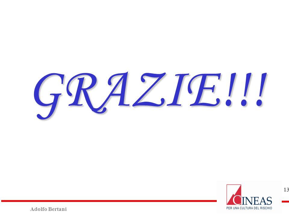 Adolfo Bertani 12 Cineas nel 2014 29/01/2014: Convegno «Calamità Naturali - L'esperienza Abruzzo e la proposta Cineas». 27/02/2014: Presentazione 2°ed