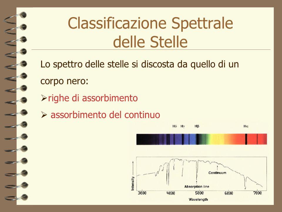 Classificazione Spettrale delle Stelle Lo spettro delle stelle si discosta da quello di un corpo nero: righe di assorbimento assorbimento del continuo