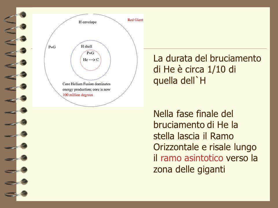 La durata del bruciamento di He è circa 1/10 di quella dell`H Nella fase finale del bruciamento di He la stella lascia il Ramo Orizzontale e risale lu