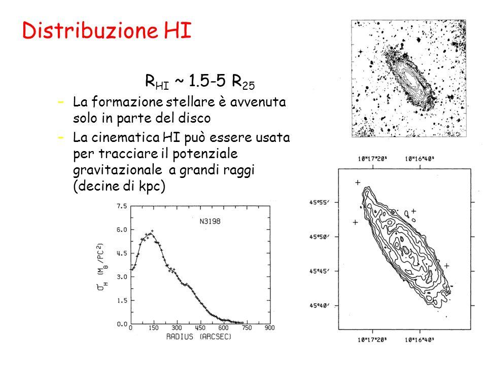 Distribuzione HI Il gas è molto più esteso --> tipicamente R HI ~ 1.5-5 R 25 –La formazione stellare è avvenuta solo in parte del disco –La cinematica HI può essere usata per tracciare il potenziale gravitazionale a grandi raggi (decine di kpc)