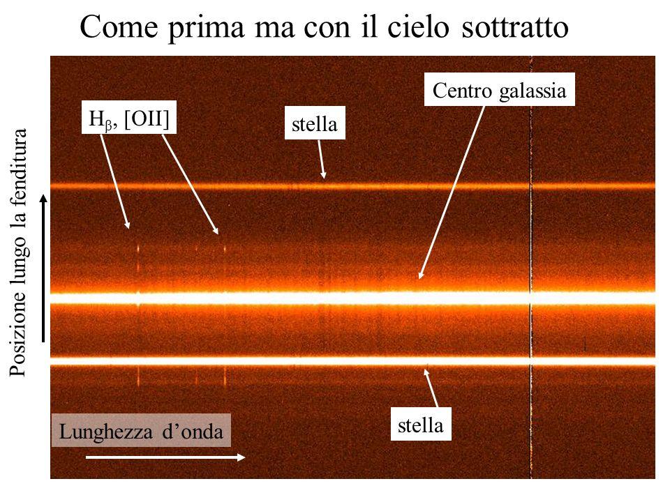 5 Come prima ma con il cielo sottratto Lunghezza donda Posizione lungo la fenditura stella Centro galassia H β, [OII]