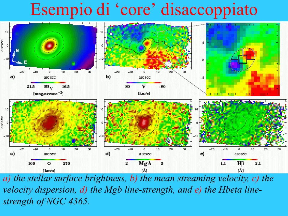 Esempio di core disaccoppiato a) the stellar surface brightness, b) the mean streaming velocity, c) the velocity dispersion, d) the Mgb line-strength,