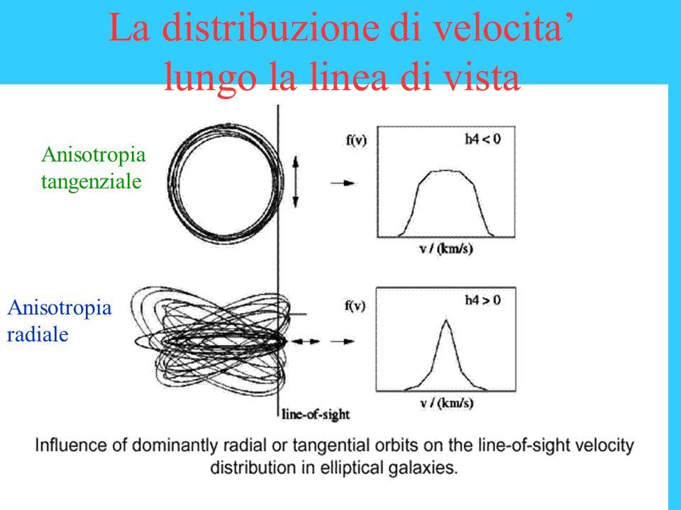 La distribuzione di velocita lungo la linea di vista Anisotropia tangenziale Anisotropia radiale