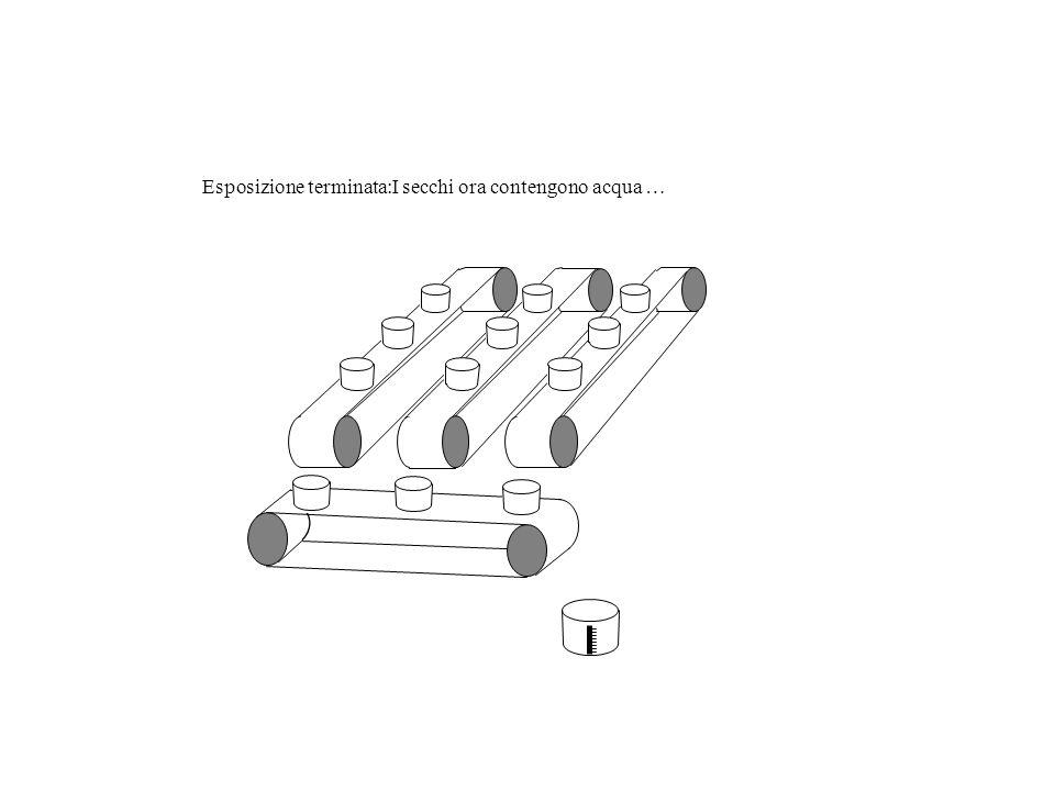 Pioggia (PHOTONS) Secchi (PIXELS) Nastro Trasportatore verticale (CCD COLUMNS) Nastro trasportatore orrizontale ( SERIAL REGISTER ) Recipiente graduat