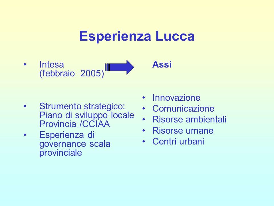 Esperienza Lucca Intesa (febbraio 2005) Strumento strategico: Piano di sviluppo locale Provincia /CCIAA Esperienza di governance scala provinciale Ass