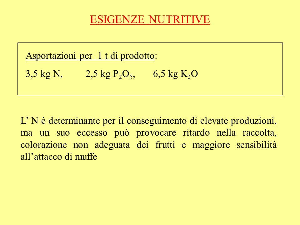 ESIGENZE NUTRITIVE Asportazioni per 1 t di prodotto: 3,5 kg N, 2,5 kg P 2 O 5, 6,5 kg K 2 O L N è determinante per il conseguimento di elevate produzi