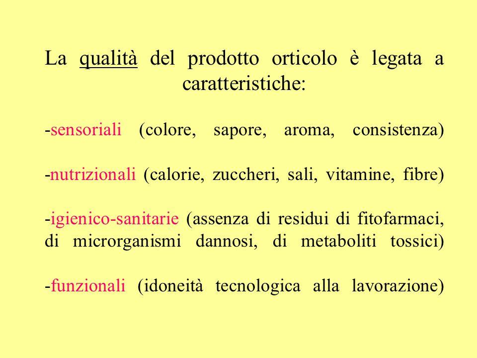 La qualità del prodotto orticolo è legata a caratteristiche: -sensoriali (colore, sapore, aroma, consistenza) -nutrizionali (calorie, zuccheri, sali,