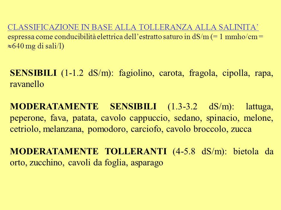 CLASSIFICAZIONE IN BASE ALLA TOLLERANZA ALLA SALINITA espressa come conducibilità elettrica dellestratto saturo in dS/m (= 1 mmho/cm = 640 mg di sali/