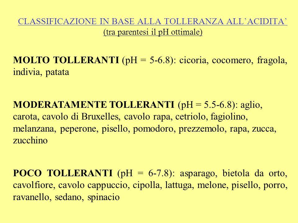 CLASSIFICAZIONE IN BASE ALLA TOLLERANZA ALLACIDITA (tra parentesi il pH ottimale) MOLTO TOLLERANTI (pH = 5-6.8): cicoria, cocomero, fragola, indivia, patata MODERATAMENTE TOLLERANTI (pH = 5.5-6.8): aglio, carota, cavolo di Bruxelles, cavolo rapa, cetriolo, fagiolino, melanzana, peperone, pisello, pomodoro, prezzemolo, rapa, zucca, zucchino POCO TOLLERANTI (pH = 6-7.8): asparago, bietola da orto, cavolfiore, cavolo cappuccio, cipolla, lattuga, melone, pisello, porro, ravanello, sedano, spinacio