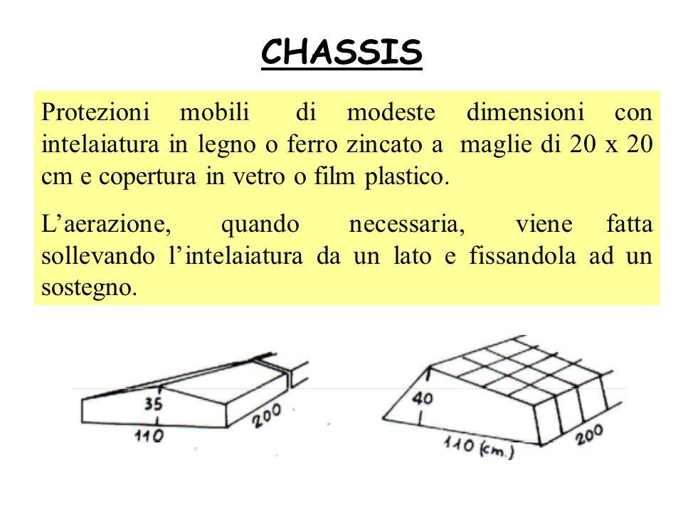 CHASSIS Protezioni mobili di modeste dimensioni con intelaiatura in legno o ferro zincato a maglie di 20 x 20 cm e copertura in vetro o film plastico.