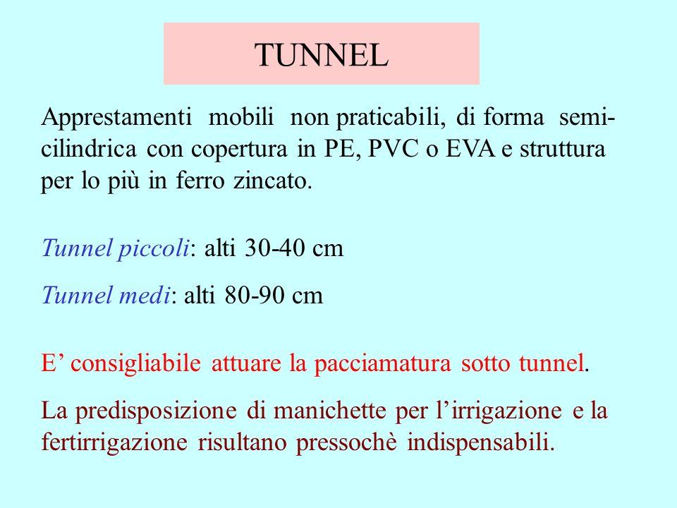 TUNNEL Apprestamenti mobili non praticabili, di forma semi- cilindrica con copertura in PE, PVC o EVA e struttura per lo più in ferro zincato. Tunnel