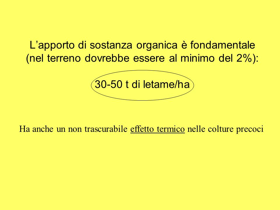 Lapporto di sostanza organica è fondamentale (nel terreno dovrebbe essere al minimo del 2%): 30-50 t di letame/ha Ha anche un non trascurabile effetto