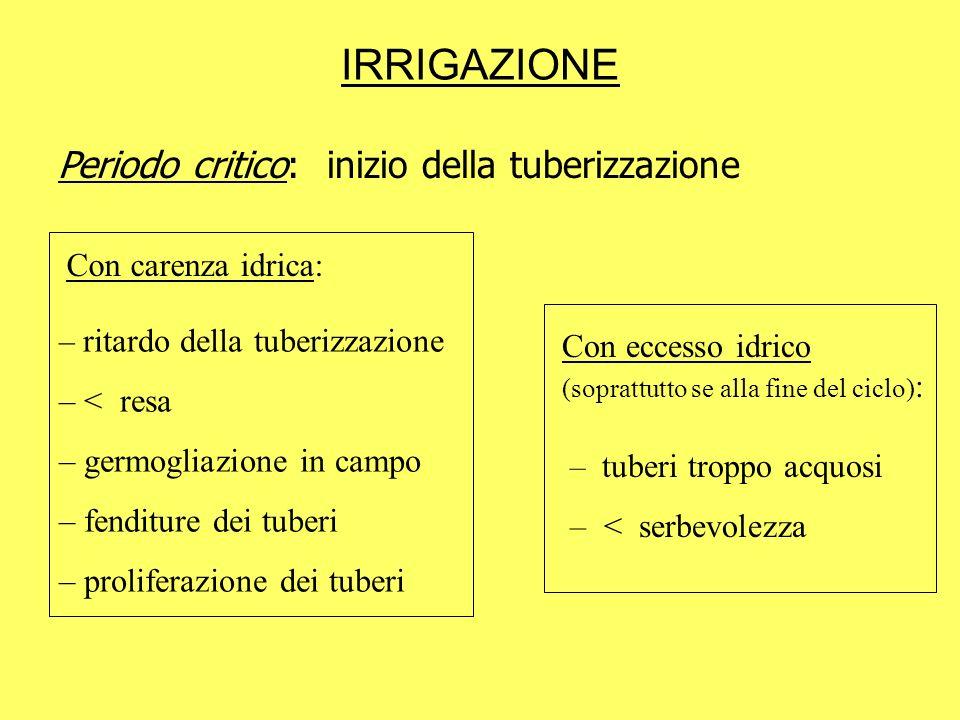 IRRIGAZIONE Periodo critico: inizio della tuberizzazione Con carenza idrica: – ritardo della tuberizzazione – < resa – germogliazione in campo – fendi