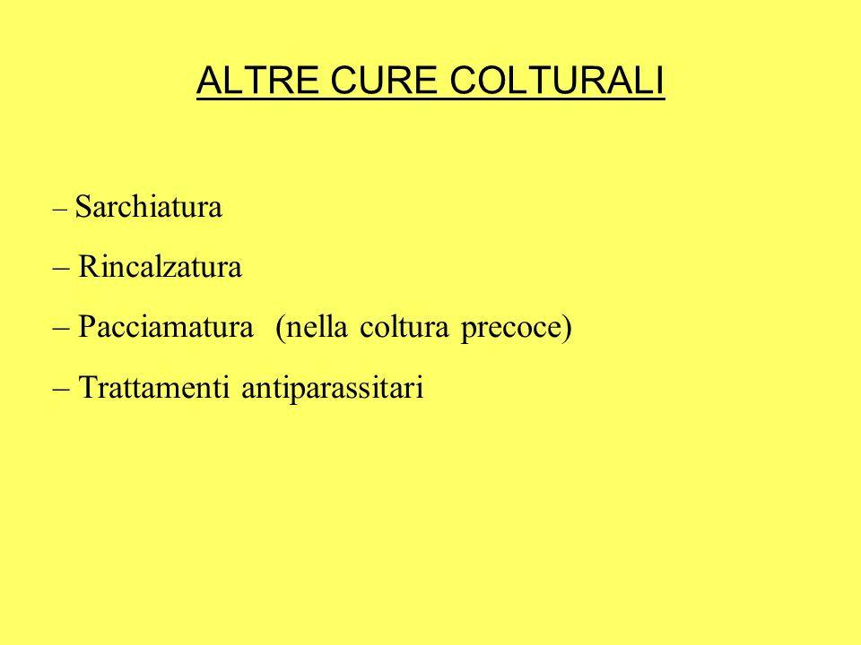 ALTRE CURE COLTURALI – Sarchiatura – Rincalzatura – Pacciamatura (nella coltura precoce) – Trattamenti antiparassitari