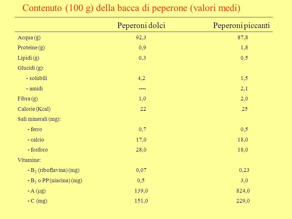 Contenuto (100 g) della bacca di peperone (valori medi) Peperoni dolci Peperoni piccanti Acqua (g) 92,3 87,8 Proteine (g) 0,9 1,8 Lipidi (g) 0,3 0,5 Glucidi (g): - solubili 4,2 1,5 - amidi ---- 2,1 Fibra (g) 1,0 2,0 Calorie (Kcal) 22 25 Sali minerali (mg): - ferro 0,7 0,5 - calcio 17,0 18,0 - fosforo 28,0 18,0 Vitamine: - B 2 (riboflavina) (mg) 0,07 0,23 - B 3 o PP (niacina) (mg) 0,5 3,0 - A ( g)139,0 824,0 - C (mg)151,0 229,0