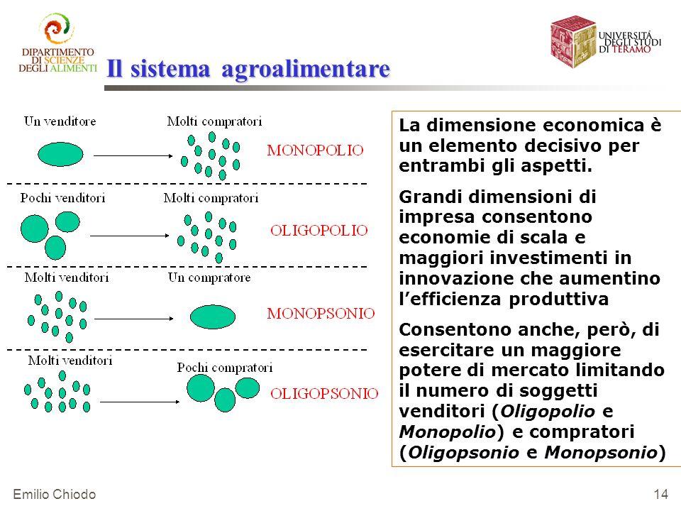 Emilio Chiodo 14 La dimensione economica è un elemento decisivo per entrambi gli aspetti. Grandi dimensioni di impresa consentono economie di scala e