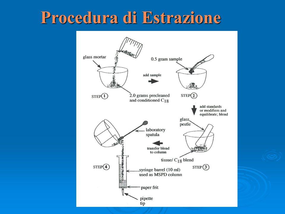 Procedura di Estrazione