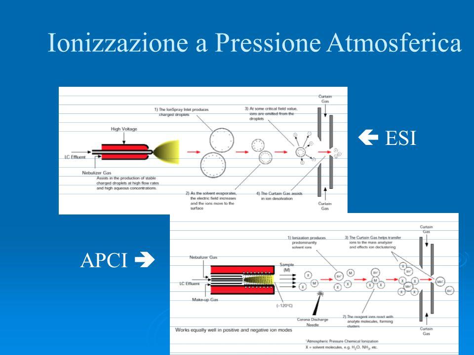 Ionizzazione a Pressione Atmosferica APCI ESI