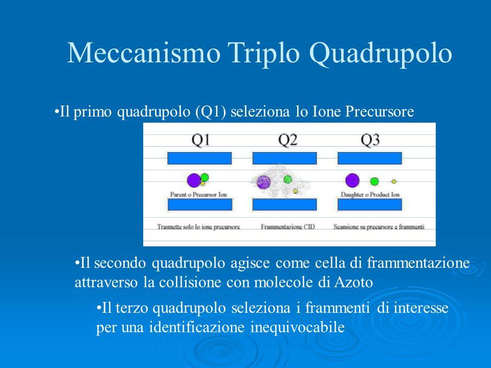 Meccanismo Triplo Quadrupolo Il primo quadrupolo (Q1) seleziona lo Ione Precursore Il secondo quadrupolo agisce come cella di frammentazione attravers