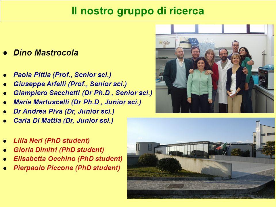 Dino Mastrocola Paola Pittia (Prof., Senior sci.) Giuseppe Arfelli (Prof., Senior sci.) Giampiero Sacchetti (Dr Ph.D, Senior sci.) Maria Martuscelli (Dr Ph.D, Junior sci.) Dr Andrea Piva (Dr, Junior sci.) Carla Di Mattia (Dr, Junior sci.) Lilia Neri (PhD student) Gloria Dimitri (PhD student) Elisabetta Occhino (PhD student) Pierpaolo Piccone (PhD student) Il nostro gruppo di ricerca