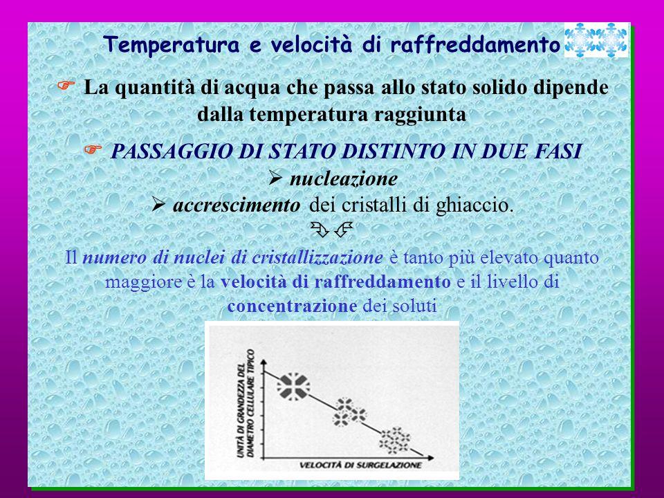 Temperatura e velocità di raffreddamento La quantità di acqua che passa allo stato solido dipende dalla temperatura raggiunta PASSAGGIO DI STATO DISTI