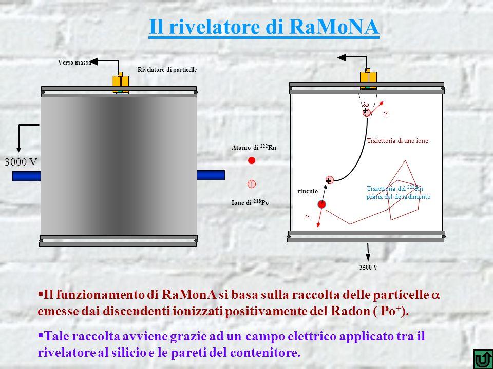 Il rivelatore di RaMoNA Rivelatore di particelle Verso massa 3500 V + + + rinculo Traiettoria di uno ione Traiettoria del 222 Rn prima del decadimento Atomo di 222 Rn Ione di 218 Po 3000 V Il funzionamento di RaMonA si basa sulla raccolta delle particelle emesse dai discendenti ionizzati positivamente del Radon ( Po + ).
