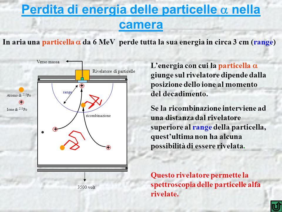 Perdita di energia delle particelle nella camera In aria una particella da 6 MeV perde tutta la sua energia in circa 3 cm (range) ricombinazione + + Rivelatore di particelle 3500 volt Verso massa Ione di 218 Po Atomo di 218 Po + + Lenergia con cui la particella giunge sul rivelatore dipende dalla posizione dello ione al momento del decadimento.