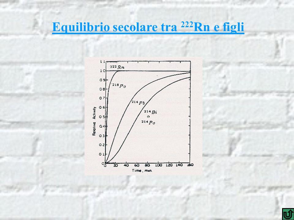 La raccolta elettrostatica Traiettorie degli ioni trasportati dal campo elettrostatico La differenza di tensione tra il corpo della cella (3500 volt) e il rivelatore (massa) genera il campo elettrostatico di raccolta.