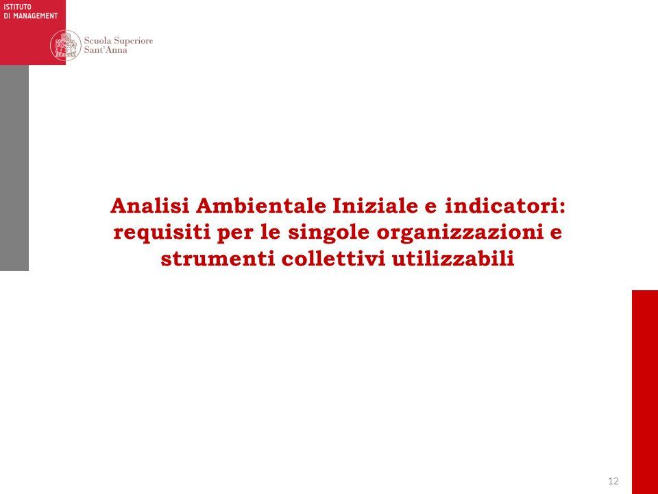 12 Analisi Ambientale Iniziale e indicatori: requisiti per le singole organizzazioni e strumenti collettivi utilizzabili